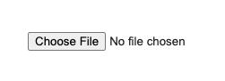 A plain HTML file upload input